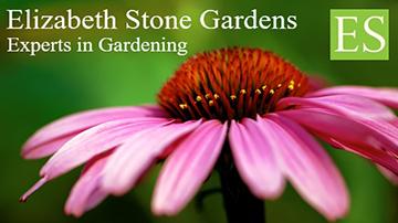 Elizabeth Stone Gardens logo